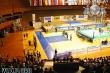 European Championship (2012)